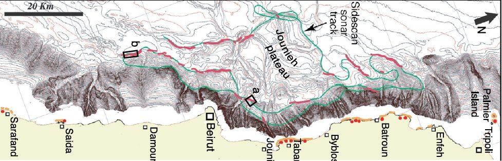 Fig. 2a rotated Elias et al (2007)