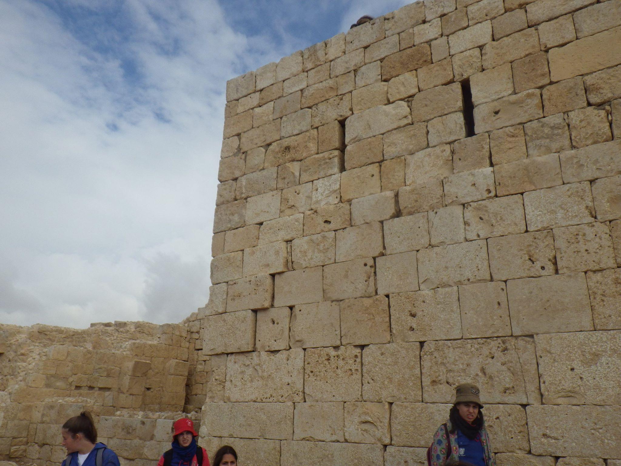Avdat Wall Bulges