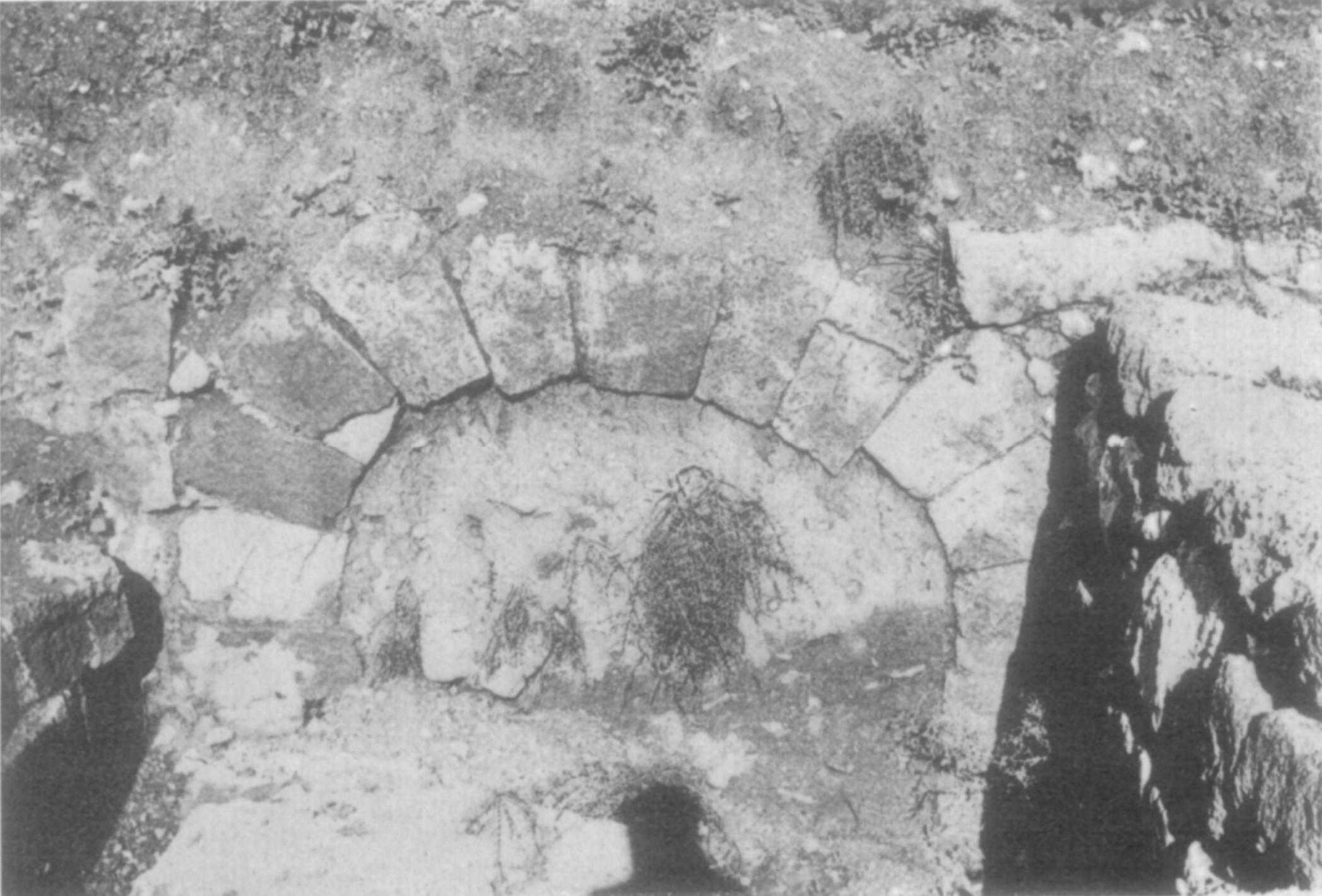 Stratigraphy of Yotvata