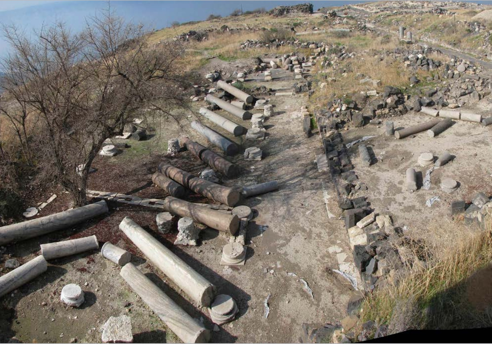 Fallen Columns from Cathedral at Hippos Sussita